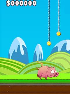 Image Run Pig Run
